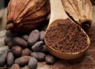 Польза какао и его применение в народной медицине